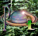 Pot collage by Hades