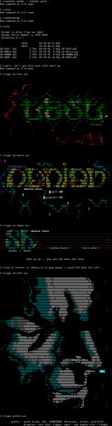 Ascii Colly by Skatter