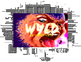 WYLd Logo by Stain Master